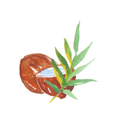 Brown whole and half coconut with green palm vector