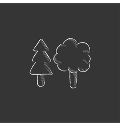 Trees Drawn in chalk icon vector image