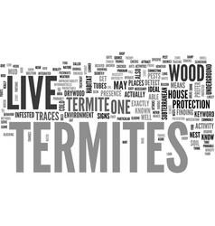 Where do termites live text word cloud concept vector