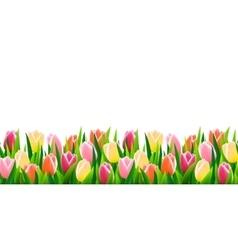 Green grass seamless border vector image