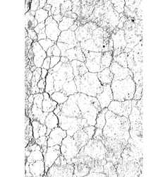 Cracked Earth vector image