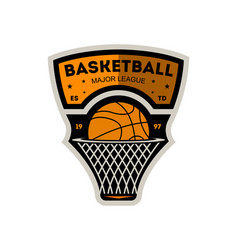 Basketball major sporty league vintage label vector
