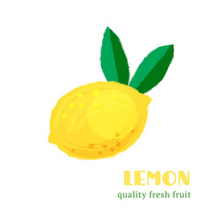 fresh lemon isolated on white background vector image