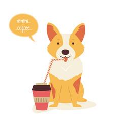 funny corgi dog having a cup coffee vector image