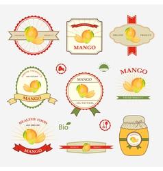 Mango set of label design vector