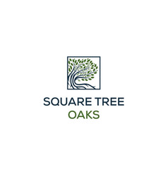 oaks logo designs in square symbol vector image