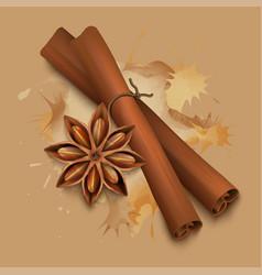 stock realistic cinnamon vector image