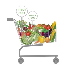 Supermarket shopping cart vector image