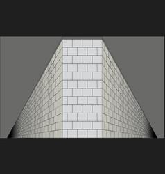The eternal perspective vector