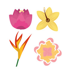 tropical differents flower flora set icons vector image