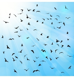 Birds gulls black silhouette on blue background vector