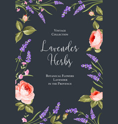 Botanical flowers poster vector
