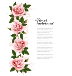 Flower background with beauty pink roses vector