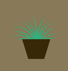 Icon in flat design flower in pot aloe vector