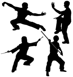 Kung Fu Fighter Silhouette vector image