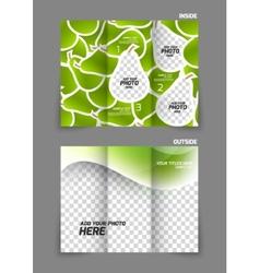 Pears texture tri fold brochure vector image