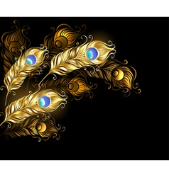 Golden Peacock Feathers vector image