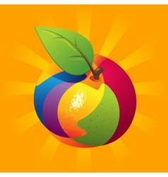 Exotic Fruit Mix vector image