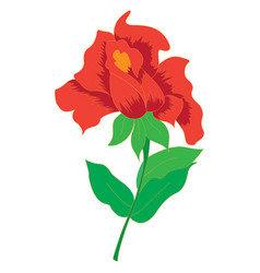 image of a beautiful red rose vector image