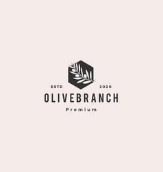 olive oil tree branch logo hipster vintage retro vector image
