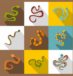 poisonous snakes icons set flat style vector image