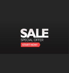 special offer sale promo banner vector image