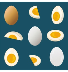 Hard boiled egg vector image