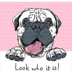 funny cartoon hipster dog Bullmastiff vector image