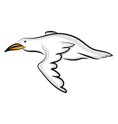 flying bird on white background vector image