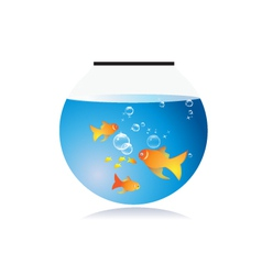 Goldfish bow with bubbles vector
