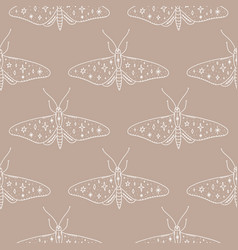 moth butterfly vintage ornate animals concept vector image