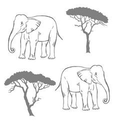 Seamless pattern with savanna animals vector