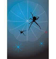 Spider on hunting vector