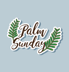 Sunday palm branches to traditional religion vector