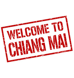 Welcome to chiang mai stamp vector