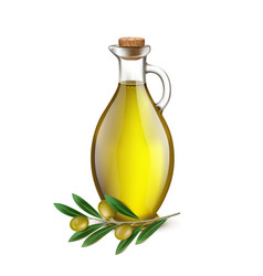 Realistic Jug Pitcher of olive oil and branch vector image vector image