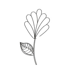 flower decoration natural sketch vector image