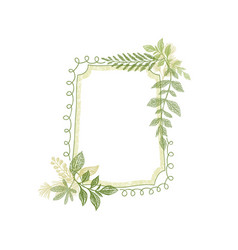 frame with greenery plant leaves decoration vector image vector image