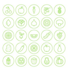 Line Circle Fresh Fruit Vegetable Icons Set vector image