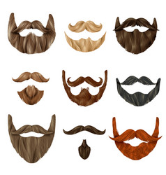 Realistic beards and mustache set vector