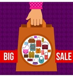 Big sale design vector image