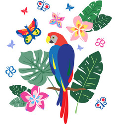Blue macaw placement vector