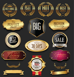 Luxury retro badges gold and silver collection 6 vector