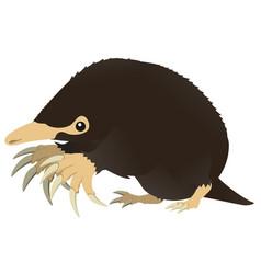 Mole cartoon vector