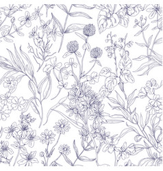 outlined botanical pattern with wild flowers vector image