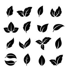 Set of black leaf icons vector