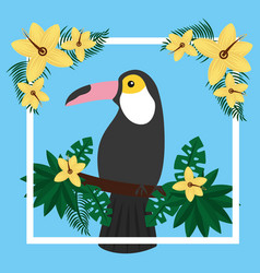 Toucan sitting on tree branch flower tropical bird vector