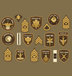 United states army military officer chevron vector