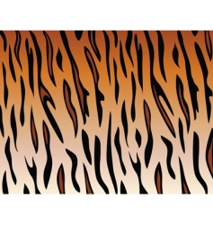 tiger skin vector image vector image
