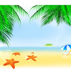 summer palm beach vector image vector image